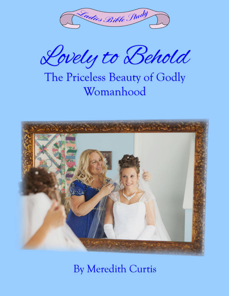 Lovely to Behold Bible Study by Meredith Curtis