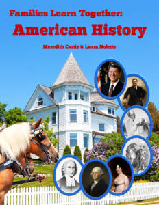 American History by Meredith Curtis