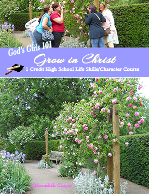 God's Girls 101: Grow in Christ by Meredith Curtis