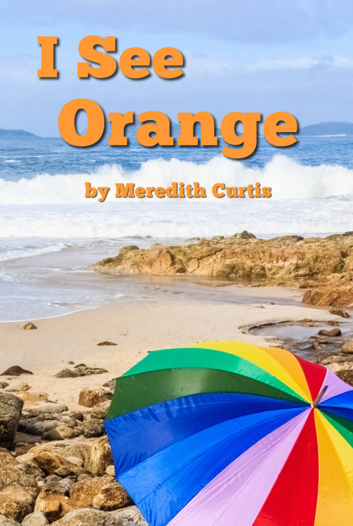 I See Orange by Meredith Curtis