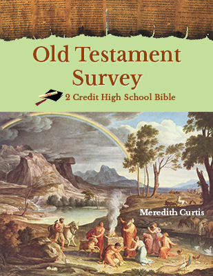 Old Testament Survey by Meredith Curtis