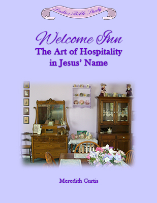 Welcome Inn by Meredith Curtis