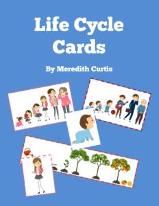Life Cycle Cards by Meredith Curtis