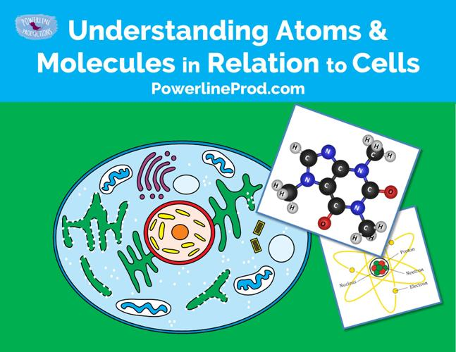 Understanding Atoms & Molecules in Relation to Cells