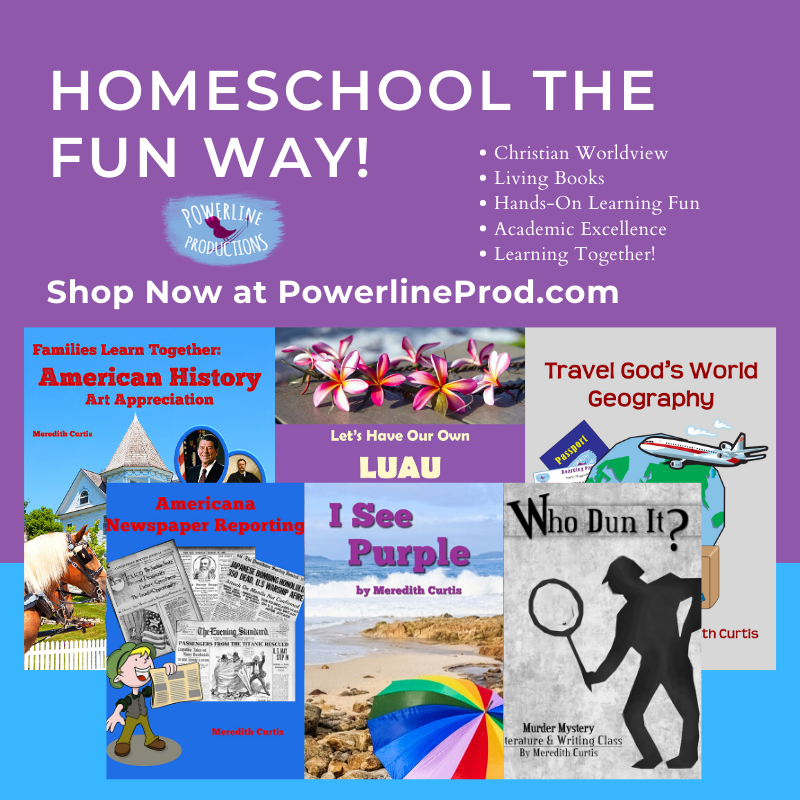 Homeschool the Fun Way PLP Ad