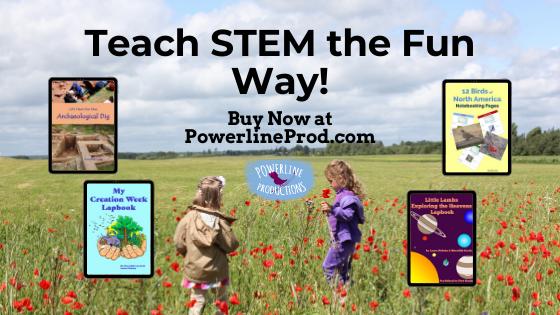 PLP Ad Teach Stem the Fun Way blog